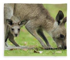 Eastern Grey Kangaroo Mother Grazing Fleece Blanket