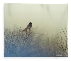 Eastern Phoebe Lacassine Pool  Lacassine Nwr Fleece Blanket