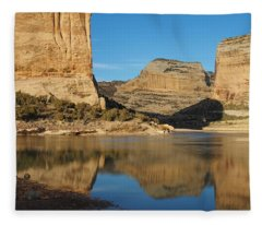 Echo Park In Dinosaur National Monument Fleece Blanket