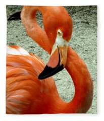 Figure Eight Flamingo Fleece Blanket