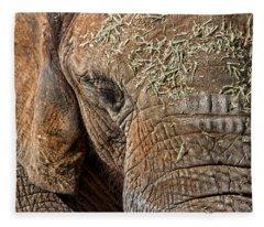 Elephant Never Forgets Fleece Blanket