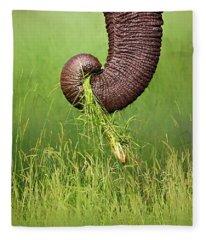 Elephant Trunk Pulling Grass Fleece Blanket