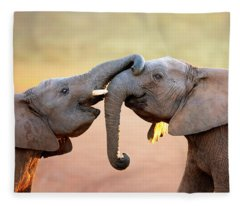 Elephants Touching Each Other Fleece Blanket