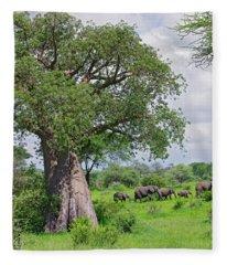 Elephants Walking Past Large Baobob Fleece Blanket