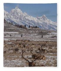 Elk And The Grand Tetons Fleece Blanket