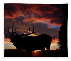 Elk At Sunset Fleece Blanket