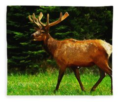 Elk Portrait Fleece Blanket