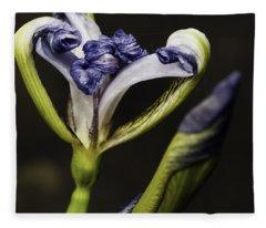 Emerging Wild Iris Fleece Blanket