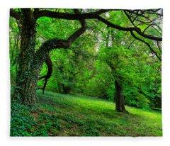 Enchanted Ivy Forest Fleece Blanket