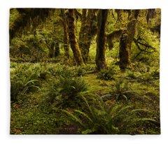 Enchantment Fleece Blanket