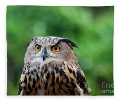 Eurasian Or European Eagle Owl Bubo Bubo Stares Intently Fleece Blanket