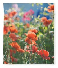 Evening Lights The Poppies Fleece Blanket