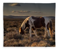 Evening Solitude In Sand Wash Basin Fleece Blanket