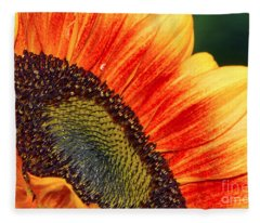 Evening Sun Sunflower Fleece Blanket