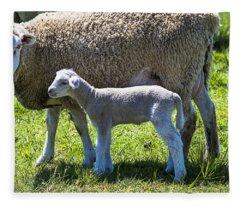 Ewe With Her Lamb Fleece Blanket