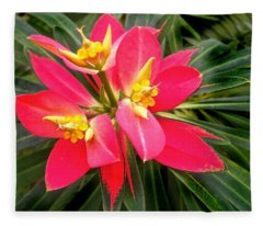 Exotic Red Flower Fleece Blanket