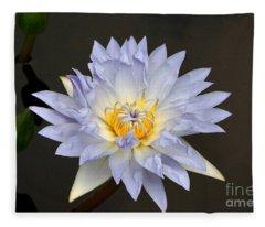 Exquisite Lavender Waterlily Fleece Blanket