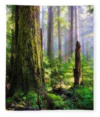 Fairy Tale Forest Fleece Blanket