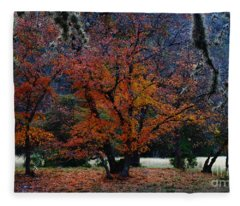 Fall Foliage At Lost Maples State Park  Fleece Blanket