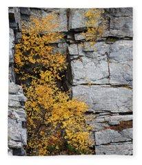 Fall Foliage Colors 01 Fleece Blanket