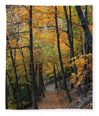 Fall Foliage Colors 03 Fleece Blanket