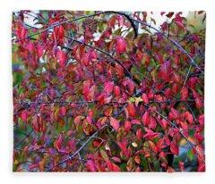 Fall Foliage Colors 05 Fleece Blanket