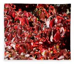Fall Foliage Colors 08 Fleece Blanket