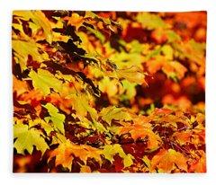 Fall Foliage Colors 13 Fleece Blanket