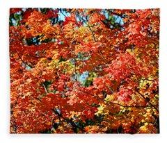Fall Foliage Colors 22 Fleece Blanket