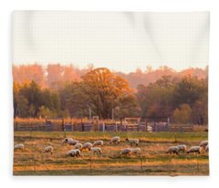 Fall Graze Fleece Blanket