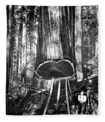 Falling A Giant Sequoia C. 1890 Fleece Blanket