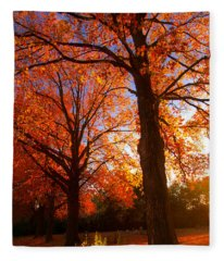 Fall's Splendor Fleece Blanket