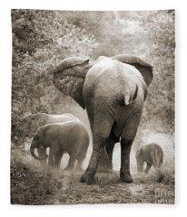 Family Of Elephants Fleece Blanket