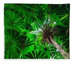 Fan Palm Tree Of The Rainforest Fleece Blanket