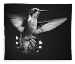 Fantail Hummingbird Fleece Blanket