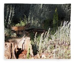 Fawn Front Yard Divide Co Fleece Blanket