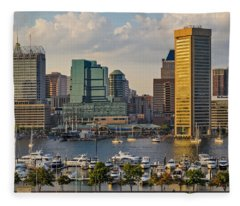 Federal Hill View To The Baltimore Skyline Fleece Blanket