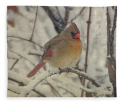 Female Cardinal In The Snow II Fleece Blanket