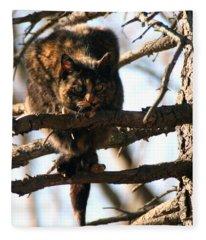 Feral Cat In Pine Tree Fleece Blanket