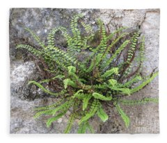 Fern Tendrils  Fleece Blanket