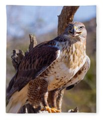Ferruginous Hawk Fleece Blanket