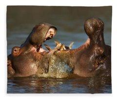 Fighting Hippo's Fleece Blanket