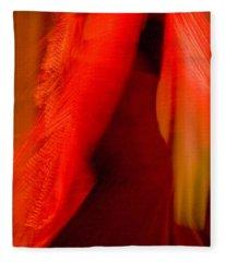Flamenco Series 10 Fleece Blanket