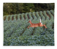 Flight Of The White-tailed Deer Fleece Blanket
