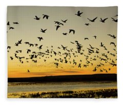Flock Of Geese Rise Off Pond At Bosque Fleece Blanket