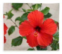 Floral Beauty  Fleece Blanket