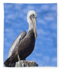 Florida Brown Pelican Fleece Blanket