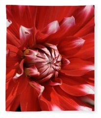 Flower- Dahlia-red-white Fleece Blanket