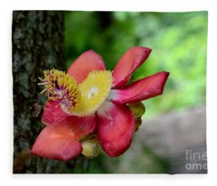 Flower Of Cannonball Tree Singapore Fleece Blanket