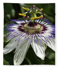 flower-Passionfruit Fleece Blanket